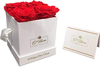 O'Hara Des Fleur Preserved Rose, Real Flowers | Eternal Flowers in a Box | Natural Fragrance, Color, and Style Up to 1 Year | Best Gift for Her, Birthday, Anniversary, Christmas (Red, White Box)