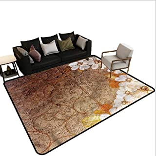Best wallflower persian carpet Reviews