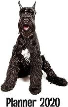 Planner 2020: Giant Schnauzer Dog Weekly and Monthly 2020 Planner Calendar Agenda Organizer (2020 Dog Planner 8.5 x 11)
