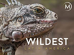 Wildest: Latin America
