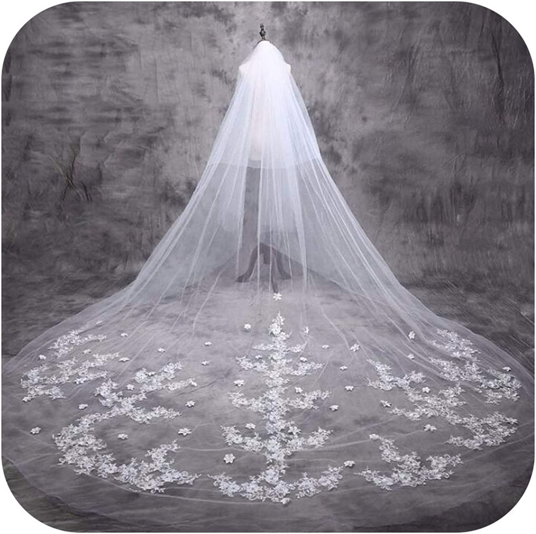 Bridal Veils 5 M Cathedral Veil Long Bride Lace Wedding Bridal Veil 5 Meters Bridal Veils With Appliques Edge,White,500Cm