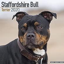 Best bull terrier calendar 2018 Reviews