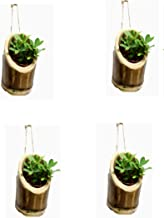 RAREPRODUCTS VERTICALHANGING Planter Set of 4 Pot with NailScrew Free -4 nos
