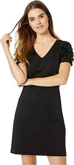 Empire Waist Dresses Clothing Shipped Free At Zappos