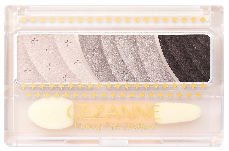 おいしい販売員例示するセザンヌ トーンアップアイシャドウ 03 チャコールブラウン 2.6g