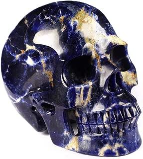 Best crystal raven skull Reviews