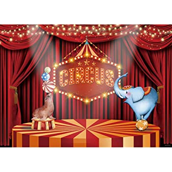 GoHeBe 10X8FT 300X240CM Blue Curtain Circus Stratus Playground Fun Fair Carnival Carousel Party Banner Newborn Booth Seamless Vinyl Photography Newborn Backdrop Photo Background Studio PGT138C