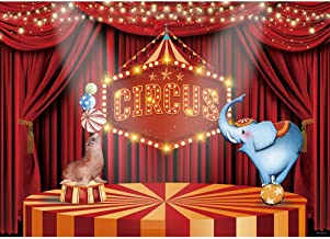 15x10ft Circus Stage Background Carnival Photography Backdrop Birthday Party Banner Photo Props WQFU091