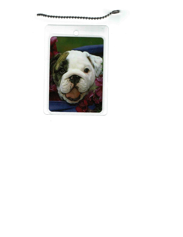 overseas English Special Campaign Bulldog Dog Tag Luggage