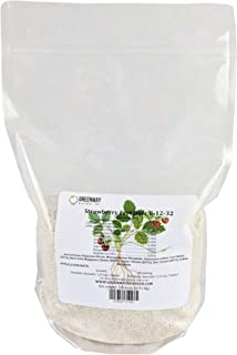 Strawberry Fertilizer 8-12-32 Powder 100% Water Soluble Plus Micro Nutrients and Trace Minerals Greenway Biotech Brand 1 Pound (Makes 200 Gallons)