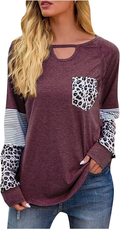 Women's Long Sleeve Leopard Print Color Block V-neck Tunic Tops Casual Fashion Stitching T-shirt Spring Autumn Shirt