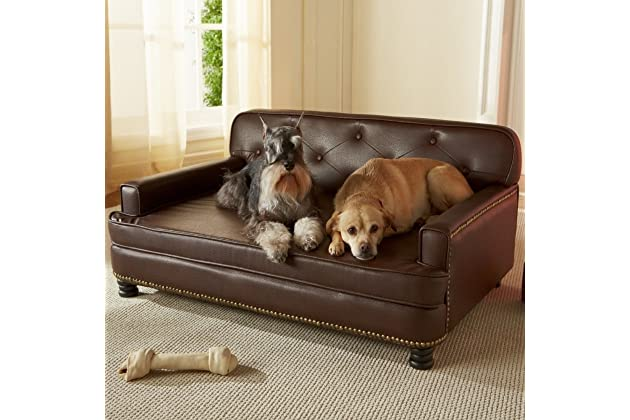 Best sofa for dogs | Amazon.com
