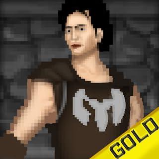 guerrero pixel - los 8 bits héroes épicos quest - gold edition