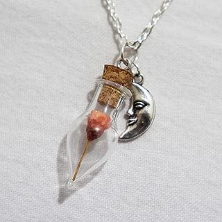 Nature Dry Flower Necklace Real Dried Flower Pendant Miniature Terrarium Necklace Nature Jewelry Flower Teardrop Mini Glass Bottle Crescent Moon