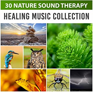 30 Nature Sound Therapy: Healing Music Collection – Sea Waves, Rains, Singing Birds, Chirping Crickets and Frogs for Deep Sleep, Relaxation & Meditation