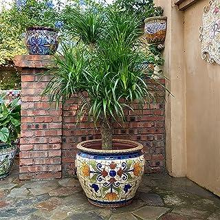 Kotee Färgad keramisk växtkruka Utomhus Courtyard Flowerpot Glaserad med tallrik Runda Terracotta med droppfack Blomma Pot...