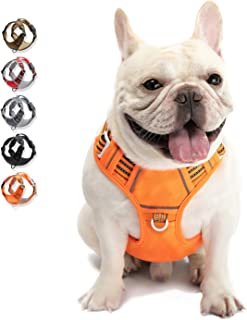 Best Dog Harness No Pull Reflective, WALKTOFINE Comfortable Harness with Handle,Fully Adjustable Pet Leash Vest for Small Medium Large Dog Breed Car Seat Harness Orange M Review