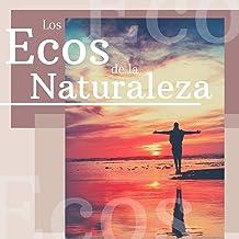 Los Ecos de la Naturaleza: Sonidos Relajantes de Agua, Lluvia, Mar y Animales para los Momentos de Relajación y Meditación