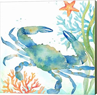 Sea Life Serenade II by Cynthia Coulter Canvas Art Wall Picture, Museum Wrapped with Sage Green Sides, 26 x 26 inches
