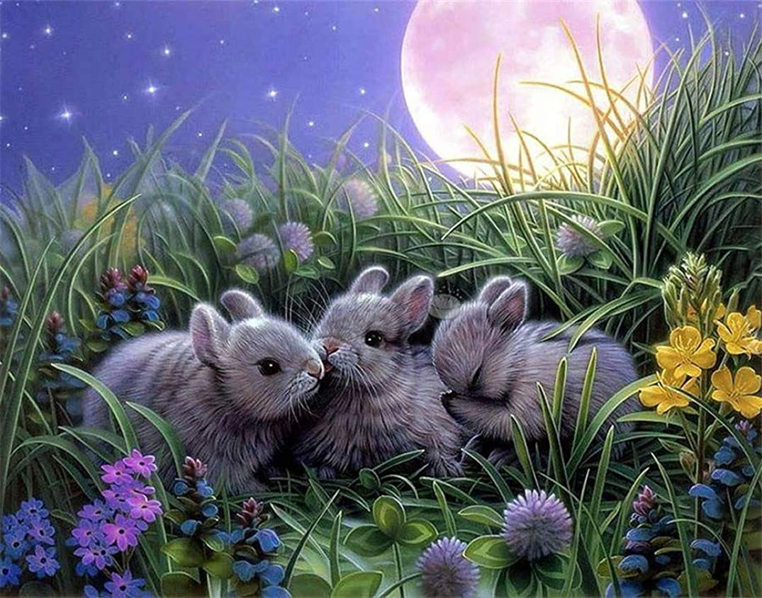DIY Oil Painting Paint by Number Kit for Kids Adults Beginner 16x20 inch - Three Gray Rabbits in The Grass, Drawing with Brushes Christmas Decor Decorations Gifts (Frame)