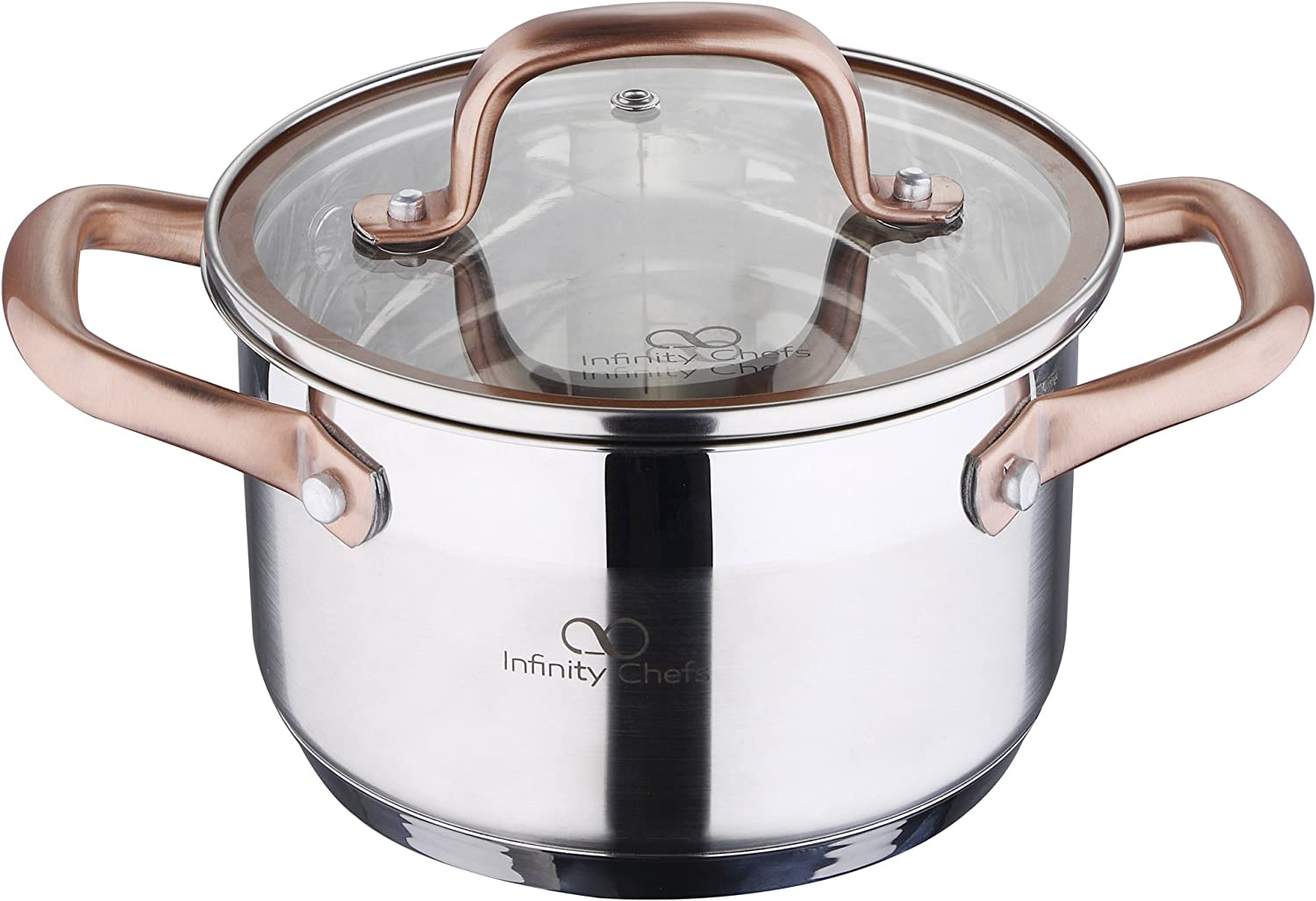 Infinity Chef Stock Pot with Lid Silver 16 Litre クリアランスsale 期間限定 cm x 10 新生活 8
