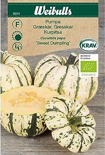 Weibulls Pumpa Sweet Dumpling KRAV