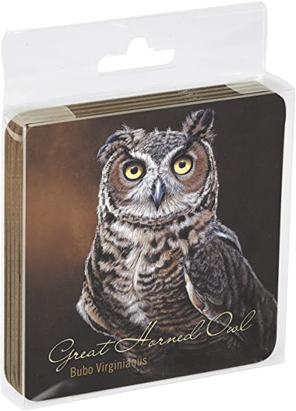 Tree Free Greetings Set Of 4 Cork Backed Coasters 3 75 X 3 75 Inches Great Horned Owl Themed Wildlife Art 52710