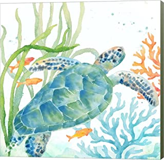 Sea Life Serenade IV by Cynthia Coulter Canvas Art Wall Picture, Museum Wrapped with Sage Green Sides, 14 x 14 inches
