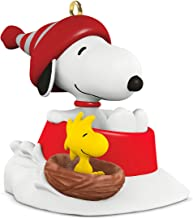 Best winter fun with snoopy 2017 Reviews
