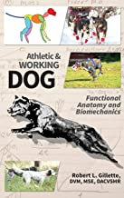Best dog anatomy workbook: a guide to the canine body Reviews
