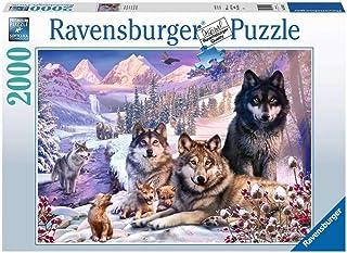 Ravensburger- Puzzle 2000 pièces-Loups dans la Neige Adulte, 4005556160129
