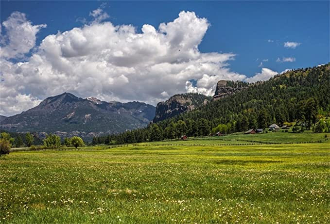 CSFOTO 10x6.5ft Spring Scenery Backdrop Spring Meadow Summer Green Mountain Hiking Picnic Blooming Flower Photography Backdrop Leisure Vacation Tour Photo Studio Props Wallpaper