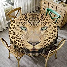 Outdoors Round Tablecloth Wildlife Decor Wild Tiger Leopard Print Picture of Art Photos Big Cat with Green Eyes in Animal Themed,Yellow Brown Dinning Tabletop Decoration Diameter 36