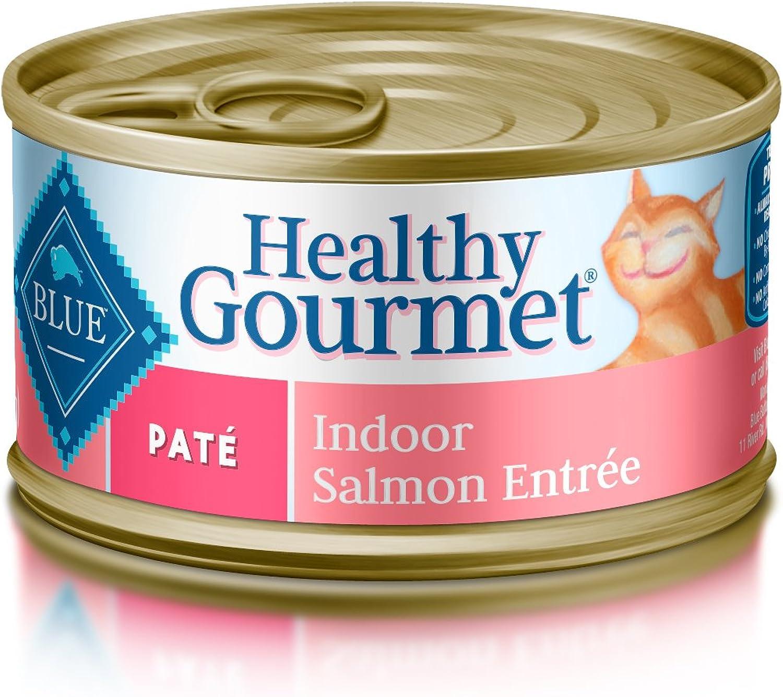 bluee Healthy Gourmet Adult Pate Indoor Salmon Wet Cat Food 3oz (Pack of 24)