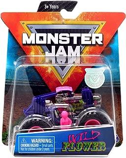 Monster Jam Hot Wheels 1:64 Scale Wild Flower, Purple/Pink