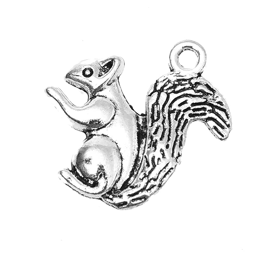 Monrocco 100 Pcs Antique Silver Tone Alloy Double Sided Squirrel Charm Pendant Bulk for Bracelets Jewelry Making