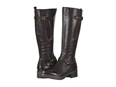 Earth Moraine (Dark Brown Andes Waterproof) Women