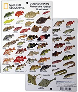 National Geographic - Guide to Inshore fish of the Pacific Northwest - Fish ID Card (6 in by 9 in)