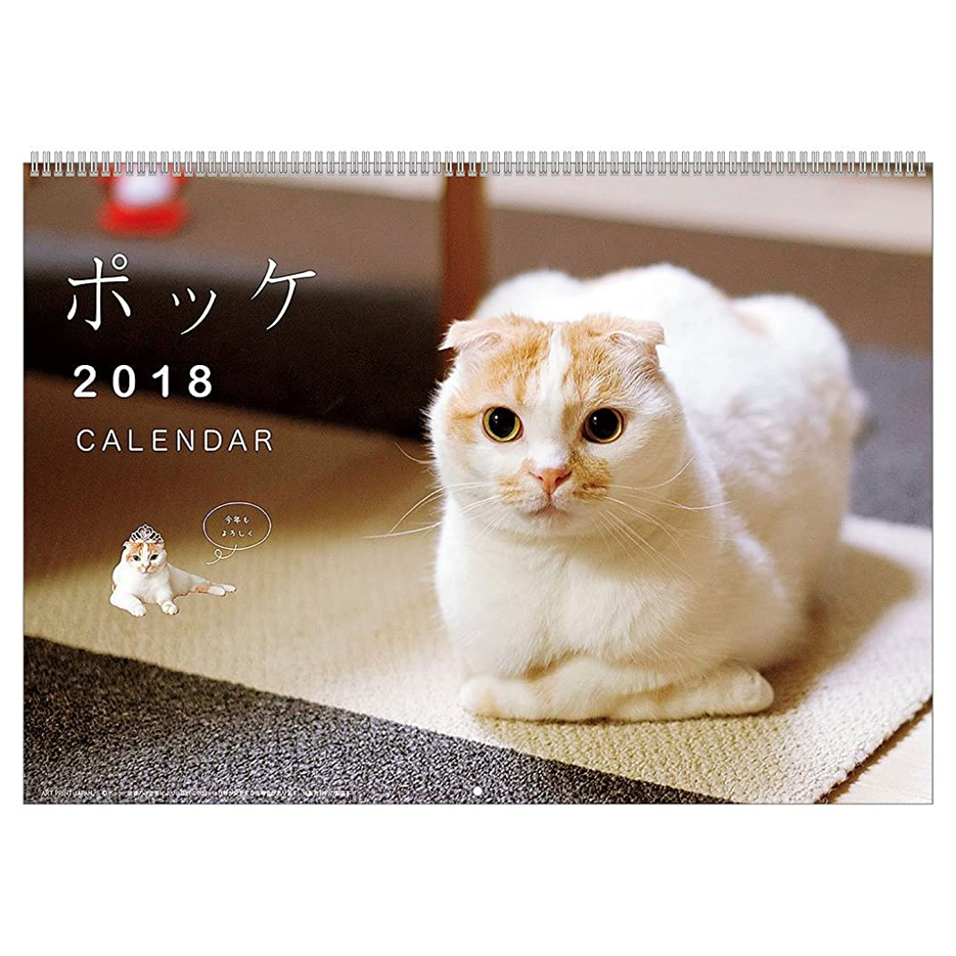 ぎこちない蒸手配するアートプリントジャパン 2018年 ポッケカレンダー No.025 1000093358