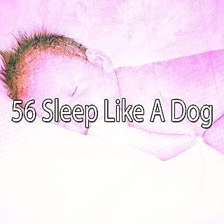 Sleep Party