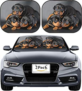 MSD Car Sun Shade Windshield Sunshade Universal Fit 2 Pack, Block Sun Glare, UV and Heat, Protect Car Interior, Image ID: 12440534 The Miniature Pinscher Puppy 3 Weeks Old Lying in Front of Black bac