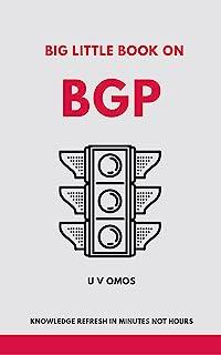 Big Little Book On BGP: BGP Refresh In Minutes (Big Little Books 1)