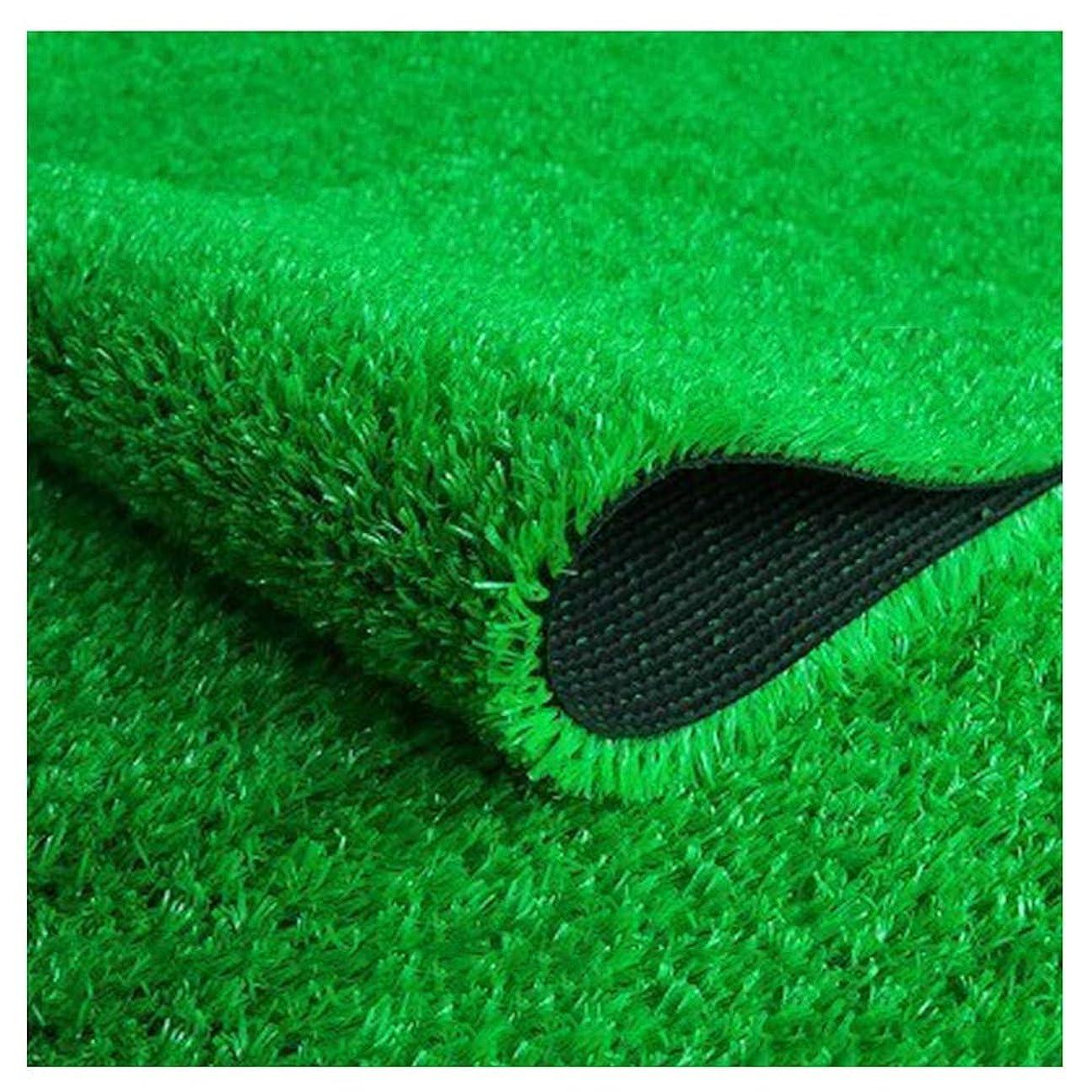 その他やむを得ない増加するYNGJUEN 高品質合成人工芝15ミリメートルの高さ、高密度休日の芝生、自然の庭の芝生 (Size : 2x4m)