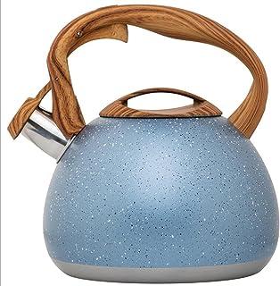 Fluitje Pot 2.8L Grote Capaciteit Roestvrijstalen Sproeipunt Fluitje Ketel Fluitje Ketel
