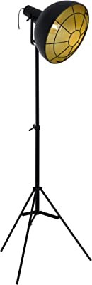 Philips myLiving Donne - Lámpara de pie para salón ...