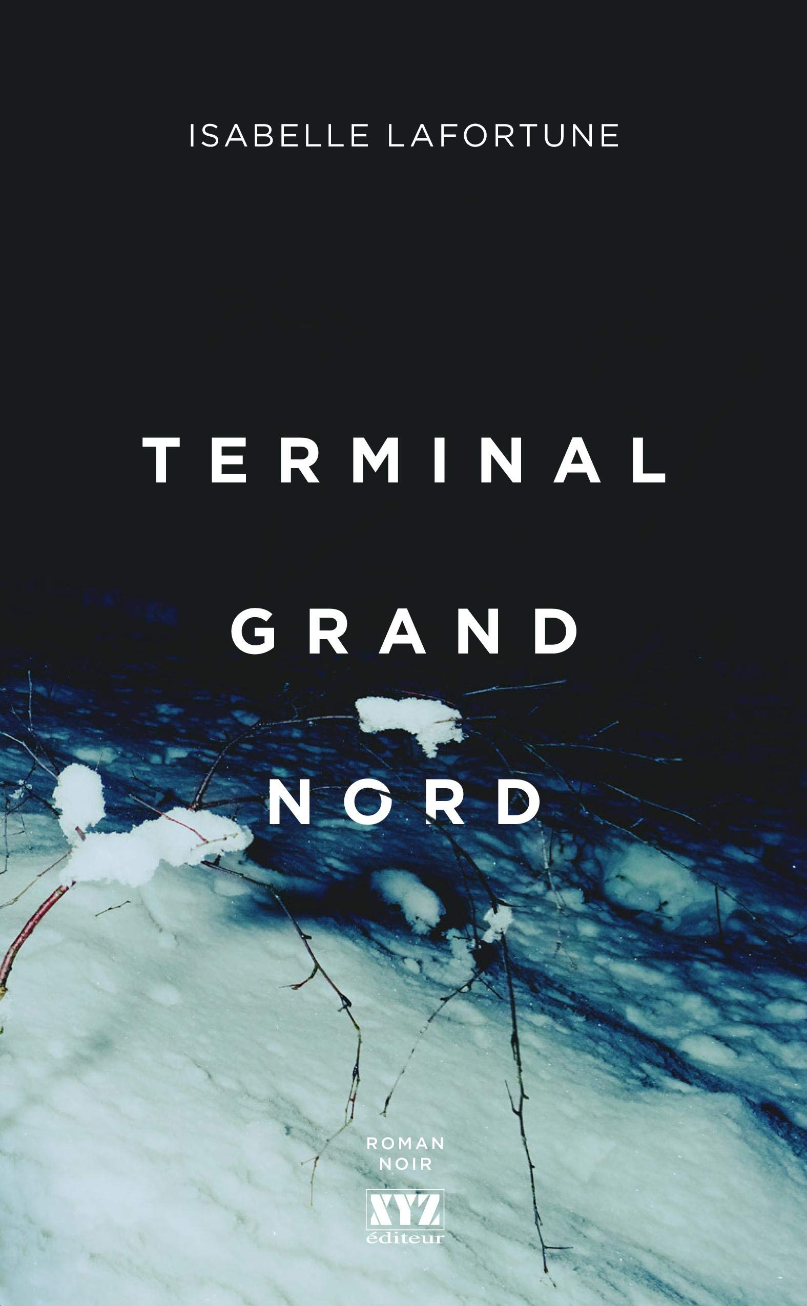 Download Terminal Grand Nord (French Edition) 