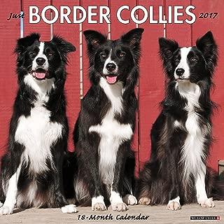 Just Border Collies 2017 Wall Calendar (Dog Breed Calendars)