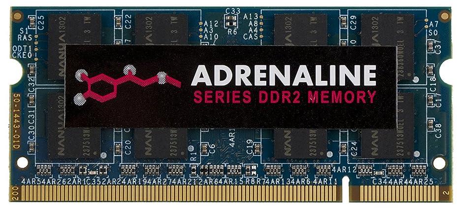 軍隊ドルルーフVisionTek 4GB DDR2 800 MHz (PC2-6400) CL5 SODIMM Notebook Memory - 900616 [並行輸入品]