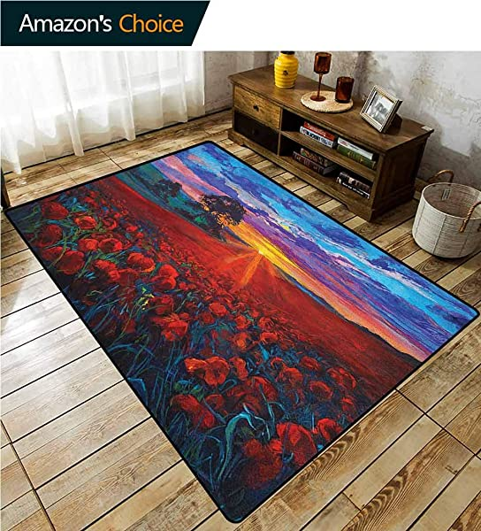 YucouHome Country Coco Fiber Area Rug Kids Room Scenery Of Poppy Flower Garden On Valley With Horizon And Fairy Clouds At Sunset Paint Fashionable High Class Living Dinning Room 2 X 6 Multi
