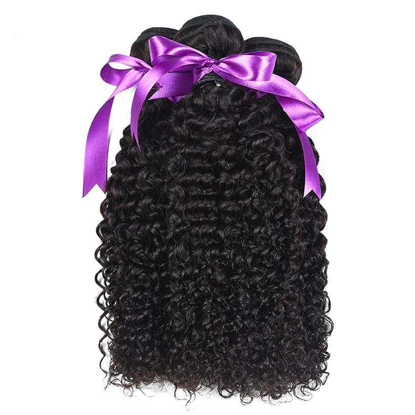 どれか完了スプレーマレーシアの巻き毛の束8-28インチ100%の人間の毛髪は、Remyの毛のナチュラルカラー3個の巻き毛の束を織ります かつら (Stretched Length : 14 16 18)